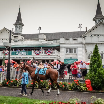 Wicked Max in the Paddock at Churchill Downs